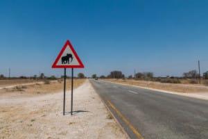Caprivi Game Reserve / Namibia