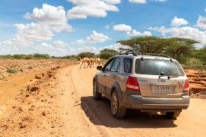 Lake Turkana / Kenia